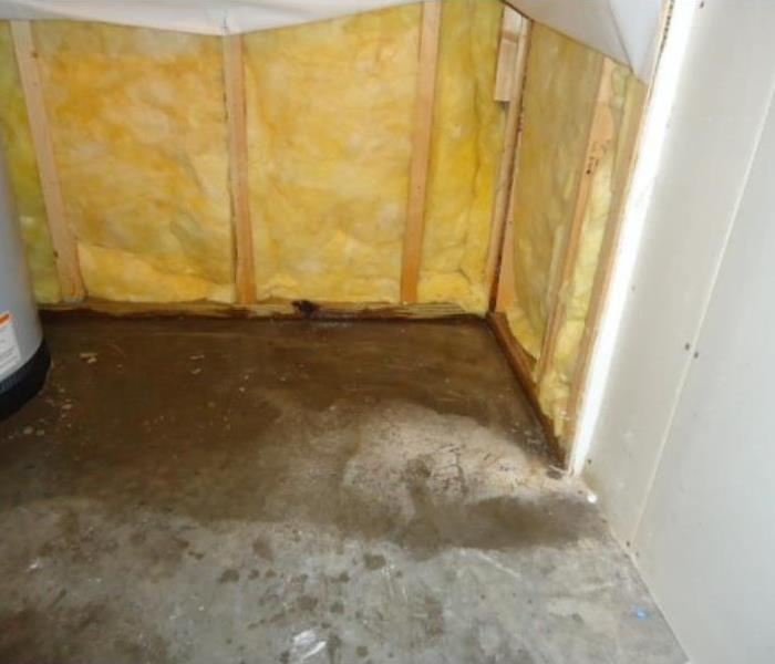 Mold Near Water Heater After