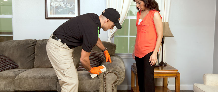 Cedar Rapids, IA carpet upholstery cleaning